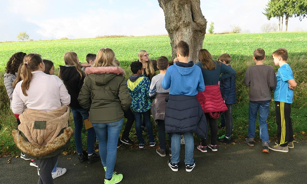 Eine Frau zeigt einer Schulklasse einen großen Baum.